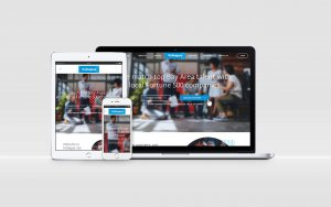 PSD to WordPress Site Created for PsiNapse