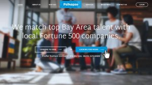 PSD to WordPress Website Created for PsiNapse